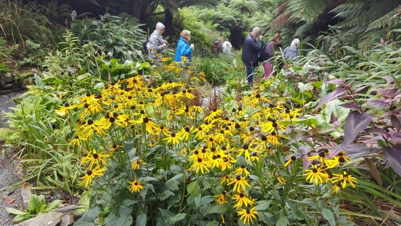 ber_blomsterflor_i_trebah_gardens