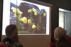 Våren kom tidlig til Tromsø i år